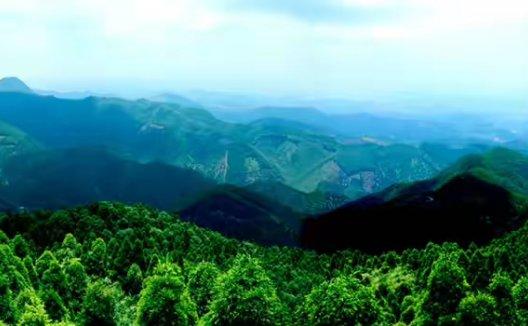 广西六万生态修复监测保护课题组飞播日常训练
